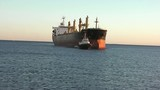 Bulk carrier tugged to port