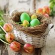 Osterkorb mit Tulpen