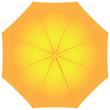 Female yellow umbrella