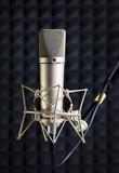 Condenser microphone in recording studio poster