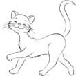 lustige Katze spazierend