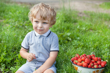 Adorable toddler with bowl strawberries on organic farm
