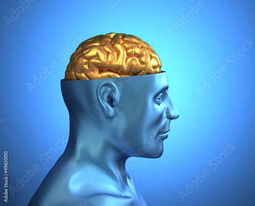 Head with golden brain