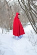 Red Riding Hood in the winter forest