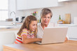 Child and granny looking at laptop