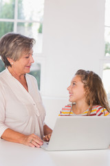 Smiling grandmother and child gazing with laptop