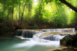 canvas print picture - Deep forest waterfall