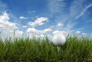 Pelota de golf en el césped