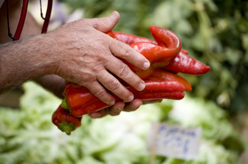 greengrocer selling red peppers