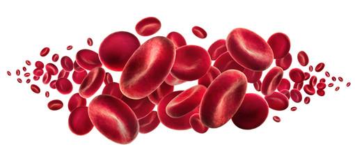 Rote Blutkörperchen vor Weiss 2