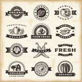 Fototapety Vintage organic harvest stamps set