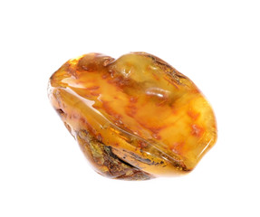 amber from coast of the Baltic sea isolated