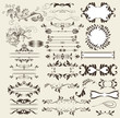 calligraphic retro vector elements and page decorations