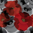 Field poppy / Seamless white-and-black wallpaper with red accent