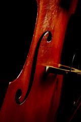 Vintage double bass