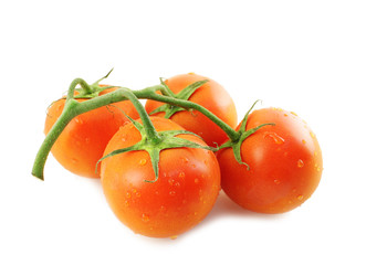 Tomatoes on a twig