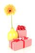 Beautiful Gerber flower with gifts isolated on white