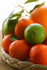different types of citrus, lime, orange