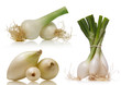 spring onions over white background