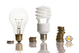 money saved in different types of light bulbs
