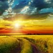 sunset over rural road near green field