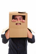 Guy with cardboard box on head