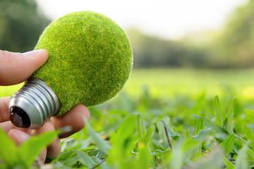hand holding eco light bulb, save energy concept