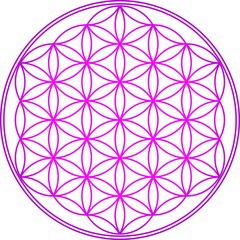 Blume des Lebens - Heilige Geometrie - Vektor Pink