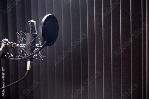Micro im Tonstudio Gesangsraum mit Schallabsorber