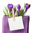 Crocuses with sheet for notes