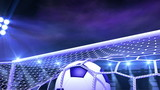 football is slowly flying in the goal, 3d animation