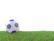 3d Football side view on pitch
