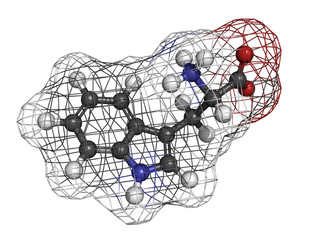 Tryptophan (Trp, W) amino acid, molecular model.