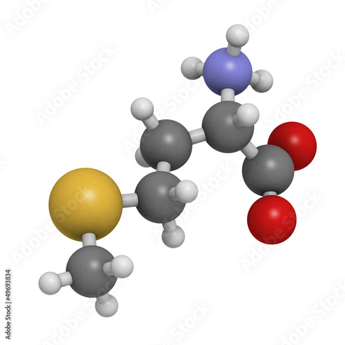 Methionine (Met, M) amino acid, molecular model.