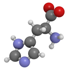 Histidine (His, H) amino acid, molecular model.