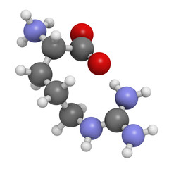 Arginine (Arg, R) amino acid, molecular model.