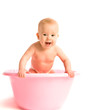 baby in a pink tub for bathing isolated