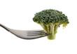 branche de brocoli sur une fourchette