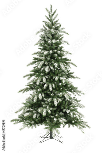 Christmas tree without ornaments on white