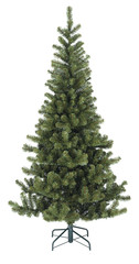 Slim bare Christmas tree