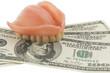 Gebiss und Dollarnoten