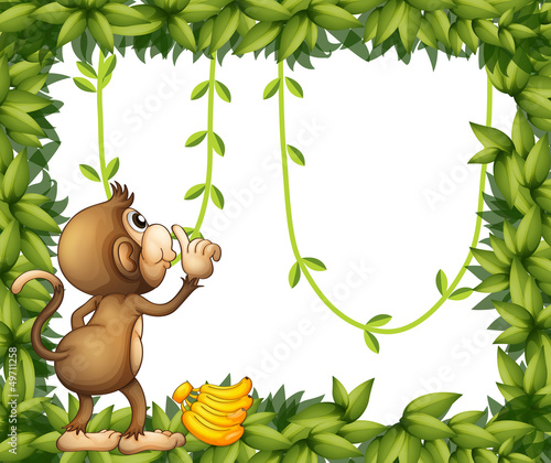A monkey with banana and the green frame