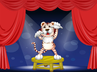 A tiger above a round table