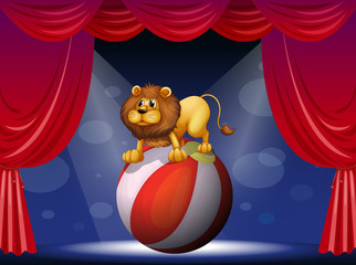 A lion performing at the circus