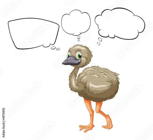 A small ostrich