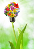 bulb from flowers on green background
