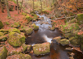 Burbage Brook flowing through Autumnal Padley Gorge in Peak Dist