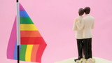 Gay groom cake toppers in front of rainbow flag revolving