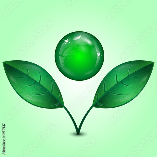 leaves and green sphere
