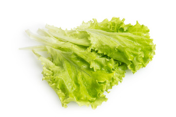 heap of fresh lettuce salad